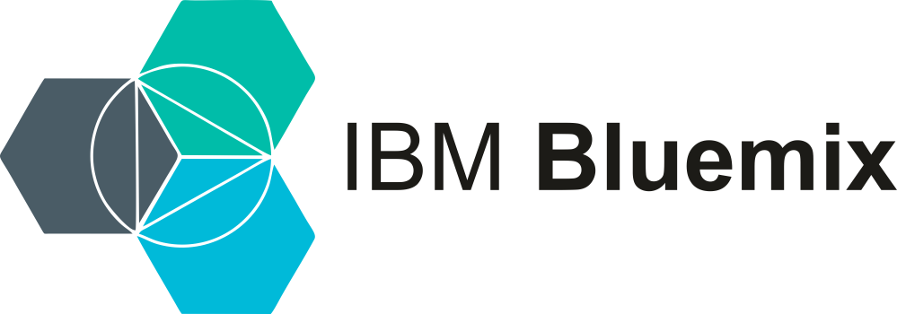 IBM Cloud Partner