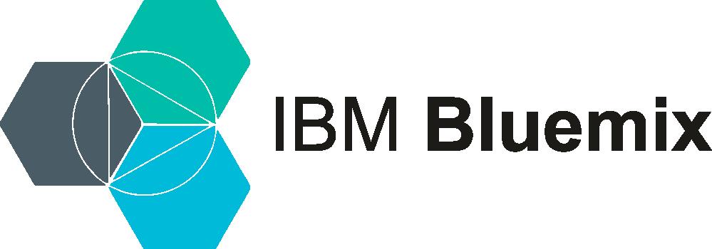 IBM Cloud Partner